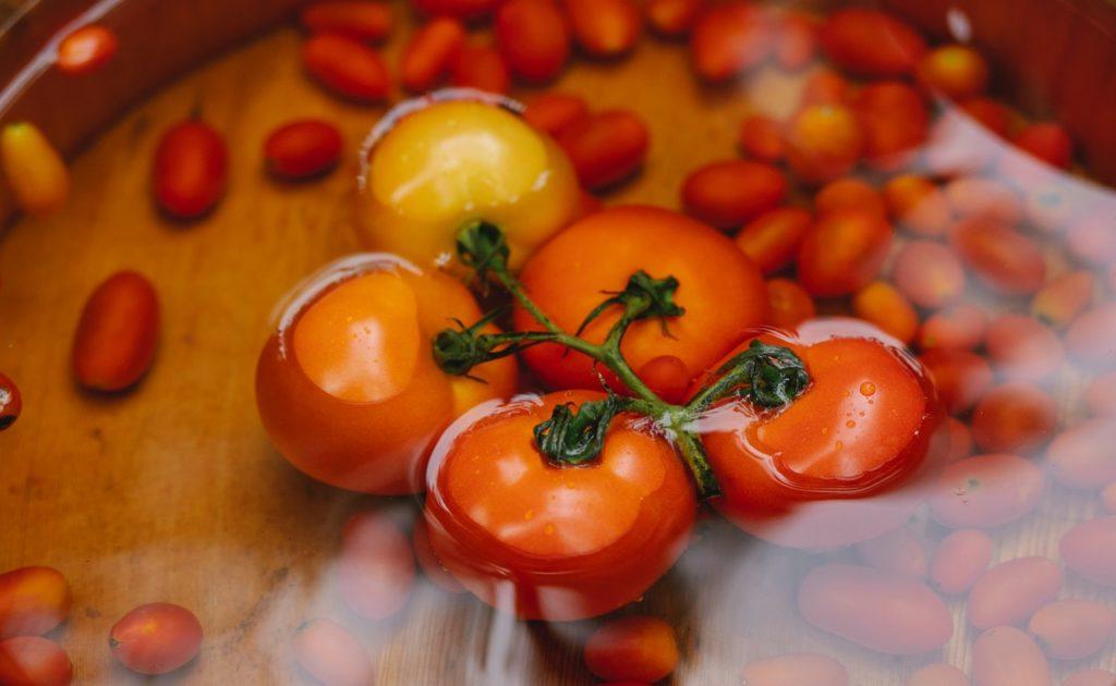 choisir semences pour jardin legumes
