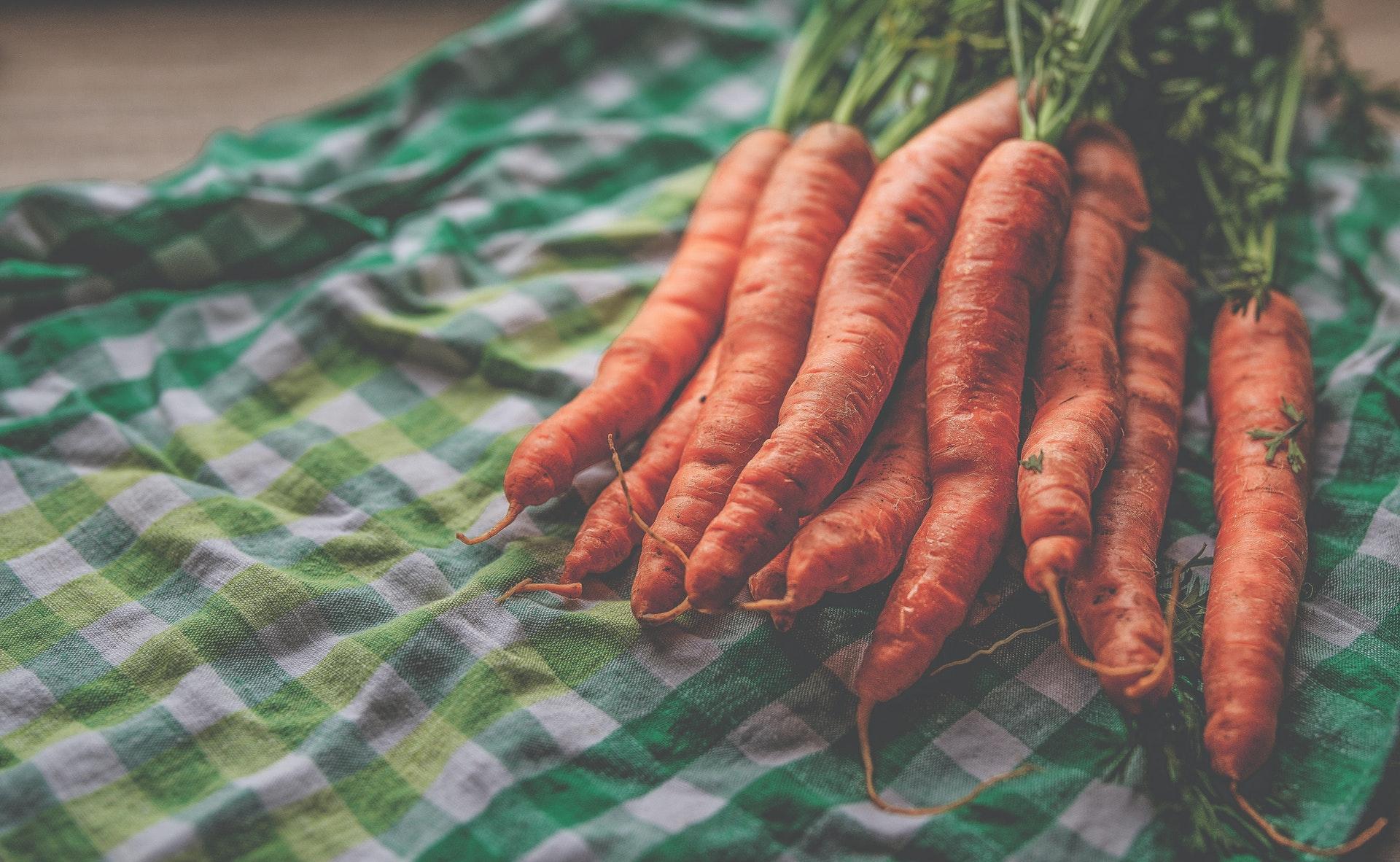 comment faire pousser des carottes