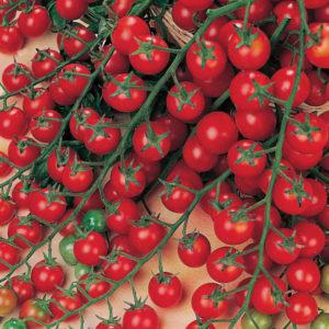 tomate cerise million