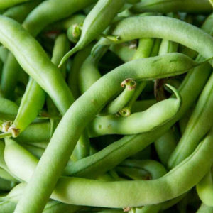haricot vert tendergreen